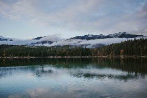 Print foggy lake